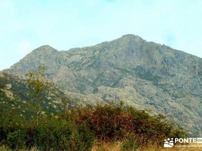 Sur Maliciosa - El Peñotillo; senderismo gredos; ecologico; viaje montaña